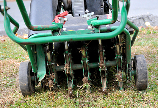 Lawn Core Aeration Companies in Rockford