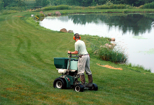 Rockford Lawn Fertilizing Companies