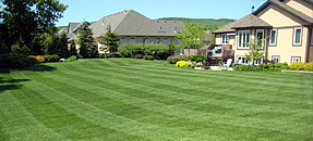 Lawn Mowing Rockford, Lawn Care Rockford, Rockford Lawn Mowing Contractors, Rockford Lawn Care Contractors